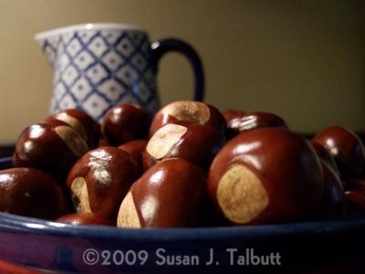 [Blue bowl with deep brown horse chestnuts, copyright Susan J. Talbutt.]